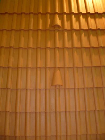 شرکت پوشش بام تخت جمشید
